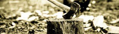 Chi spacca la Legna - wood axe