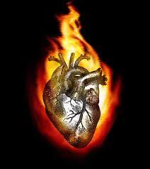 Portare fuoco nel suo seno Breve Meditazione sulla Bibbia della Chiesa Evangelica Apostolica nel Nome di Gesù tratta da  - Proverbi 6:27